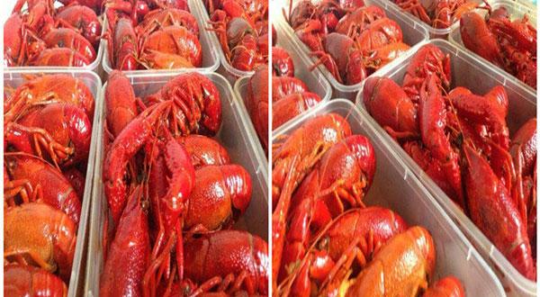 2016年龙虾外卖诱人的小龙虾-上海凯达西点西餐烹饪